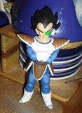 Figurines DBZ (Goku et Vegeta) Th_PICT0184