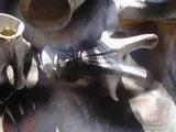 Rancor Th_DSC04466_zps4acf99ad