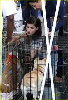 Fotos, Vídeos e Aparições Públicas - Sophia Bush (Brooke Davis) - Página 2 Sophia-bush-petco-adoption-day-07