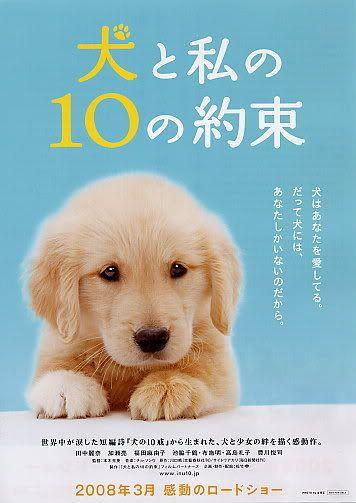 10 Promises to My Dog ~~ 10promisestomydog