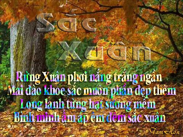 Tranh Thơ của Tamhonlangtu Sacxuan2