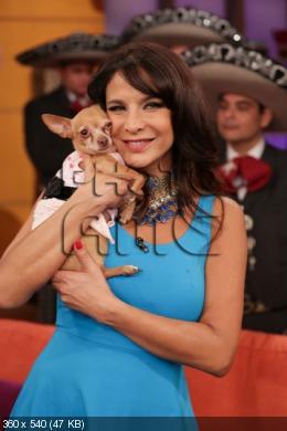 Лорена Рохас/Lorena Rojas - Страница 12 4fe94a2ac78d57206174e6b939dc83e7