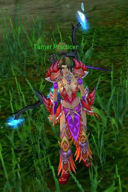 História Talisman Online Tamer