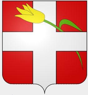 La tulipe Neydens