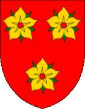 la fleur de néflier Arenberg