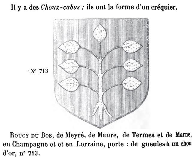 Le choux-cabus Choux-cabus