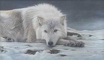 Wolves-Rule1's Characters Wolf-White4