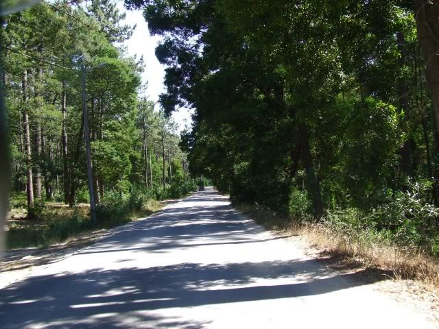 [Passeio] De Gaia, por Espinho, até ao Furadouro e por Santa Maria da Feira DSCF5059