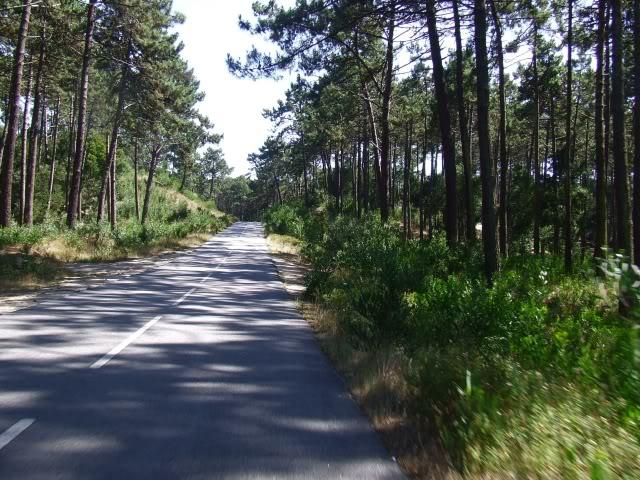 [Passeio] De Gaia, por Espinho, até ao Furadouro e por Santa Maria da Feira DSCF5066