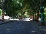 [Passeio] De Gaia, por Espinho, até ao Furadouro e por Santa Maria da Feira Th_DSCF5121