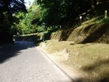 [Passeio] De Gaia, por Espinho, até ao Furadouro e por Santa Maria da Feira Th_DSCF5144
