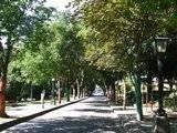 [Passeio] De Gaia, por Espinho, até ao Furadouro e por Santa Maria da Feira Th_DSCF5151