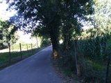 [Passeio] De Gaia, por Espinho, até ao Furadouro e por Santa Maria da Feira Th_DSCF5191