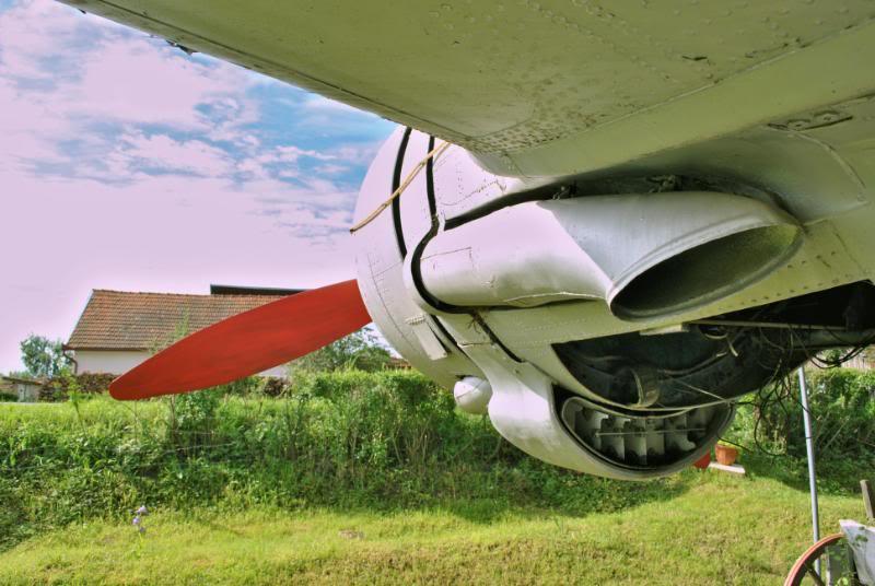 Li-2 in Romania - Pagina 2 DSC_0015