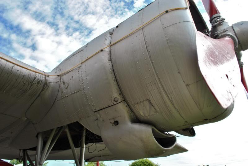 Li-2 in Romania - Pagina 2 DSC_0061