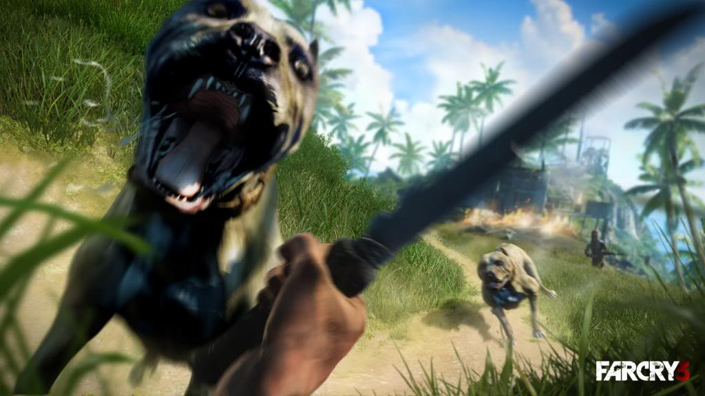 Far Cry 3 Far-Cry-3-Co-op-Patch_1_zps83e5fe1b