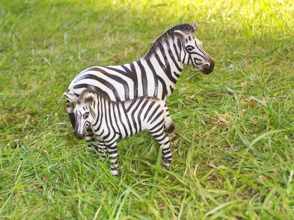 zebra veulen-uit collectie(1999 T/M 2008) Schleich-S147
