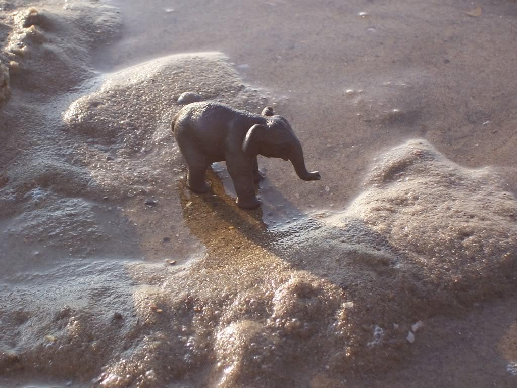 Aziatische olifant kalf- in collectie sinds 2005 Schleich-S150