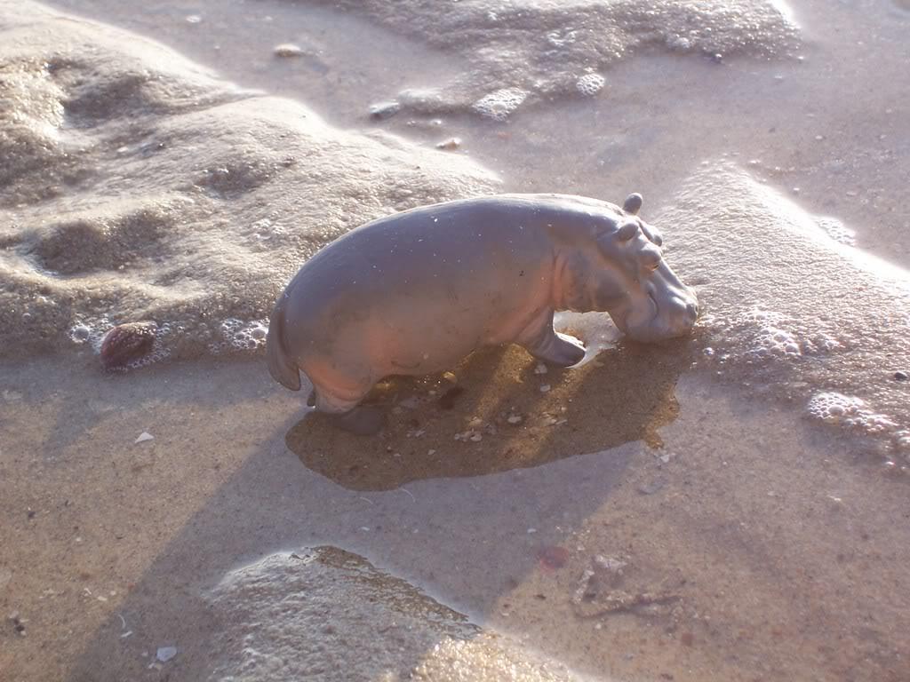 Nijlpaard Wijfje-uit collectie 1991 t/m 2004 Schleich-S153