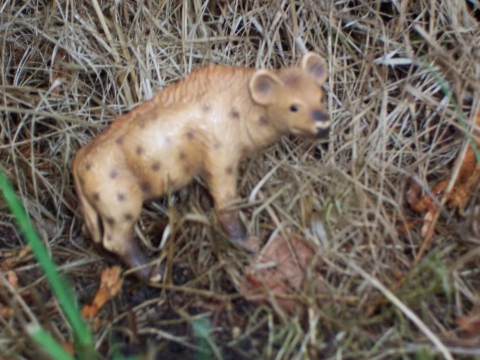Gevlekte Hyena-uit collectie (2005 t/m 2006) Schleich-S171