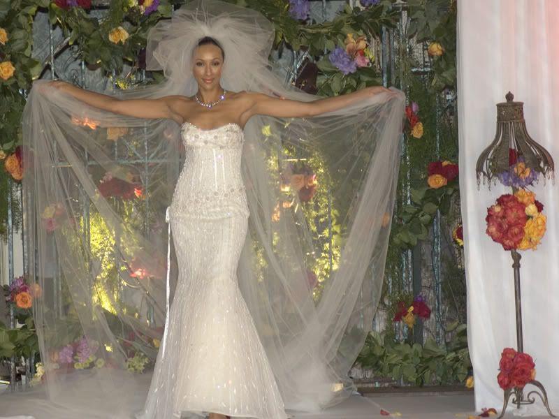 rochia mea de mireasa Diamond-wedding-dress-08