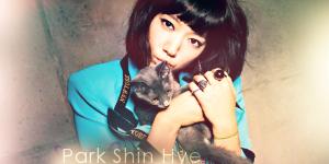 [ACTRICE] Park Shin Hye 441693essai01-3