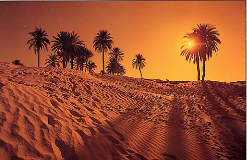 اجمل صحراء في العالم  Desert2carte