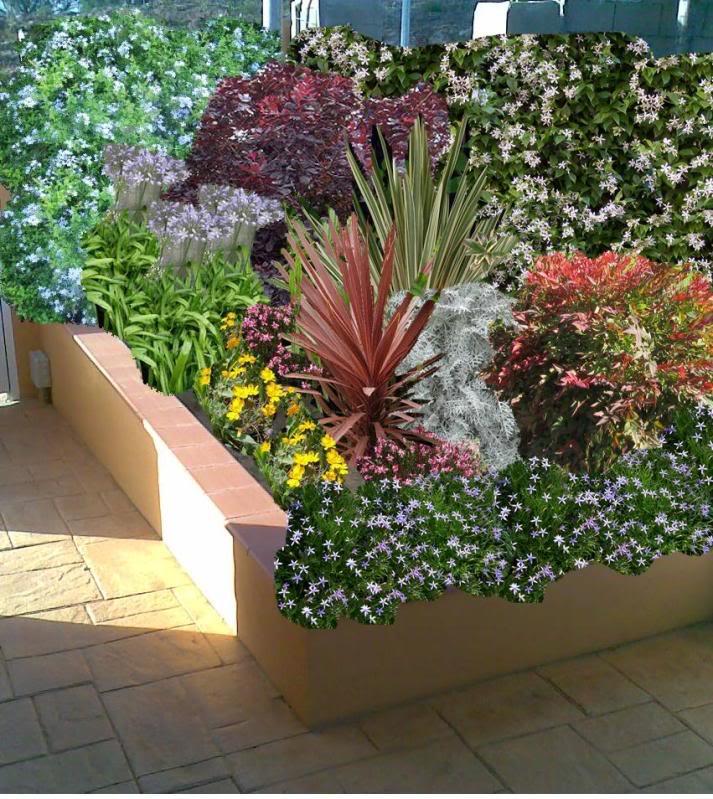 Jardin en Girona Dibujo5-1
