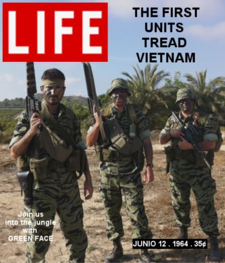 25th first combat mission Life_greenface