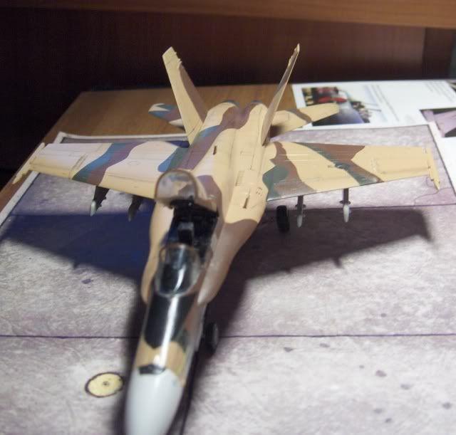 F-18C AGGRESSOR 1/72 HSEGAWA HPIM3517