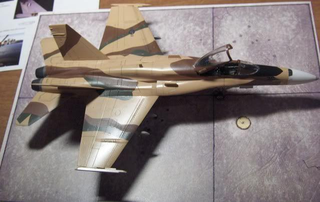 F-18C AGGRESSOR 1/72 HSEGAWA HPIM3518