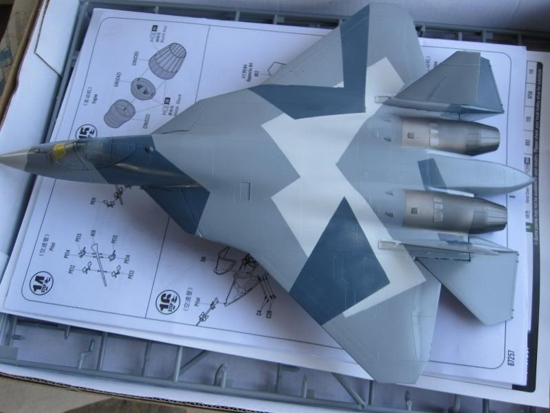 Russian bane Τ-50 ΠΑΚ-ΦΑ IMG_0002-2_zps629da8cd