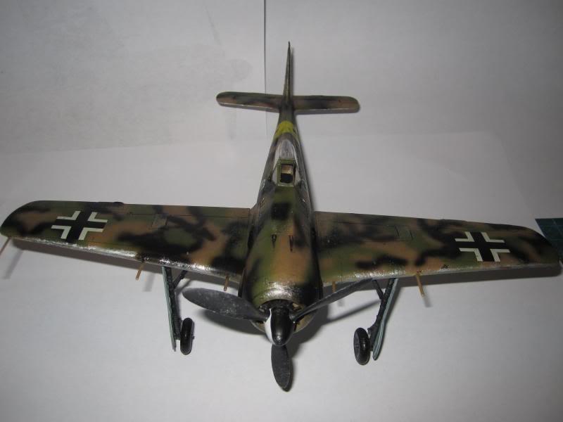 Jagdgeschwader 54  Grünherz   (JG 54 Green Hearts) IMG_0020_zpsd72b3149