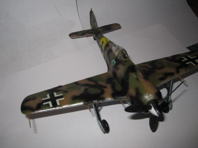 Jagdgeschwader 54  Grünherz   (JG 54 Green Hearts) IMG_0021_zps28b7a5d5