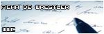 Ficha De Wrestler
