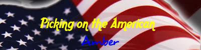 Amber again? FLMNetworkSig4d09a42a400a8