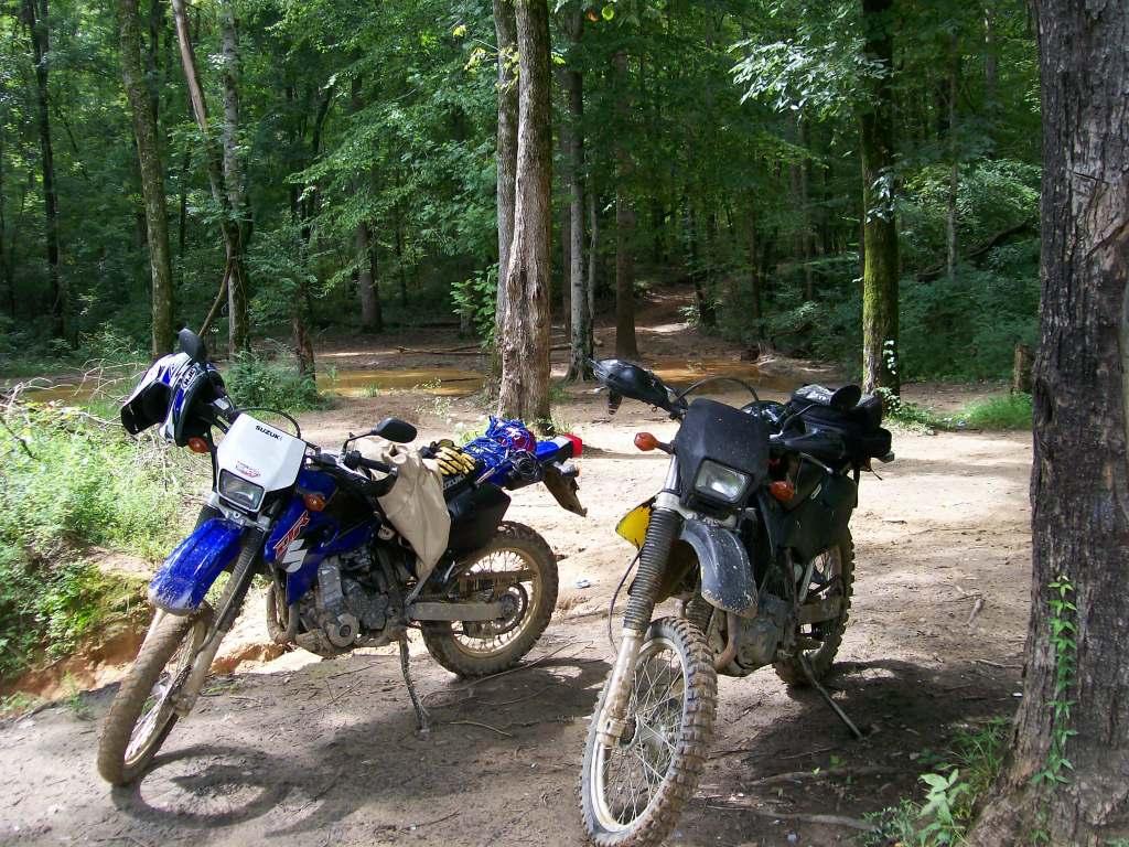 Local trails DRZ014