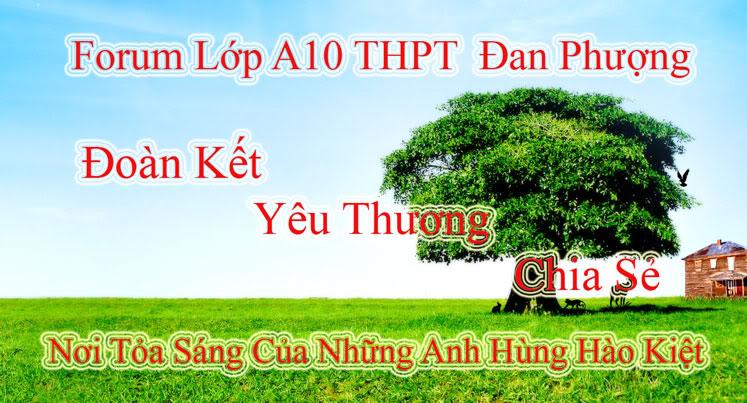 Forum Lớp A10 THPT Đan Phượng Khóa 2004-2007