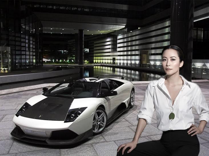 Du Phi Hồng | Yu Fei Hong | 俞飞鸿 FH