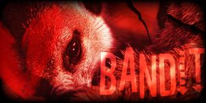 Siggy Project Bandit