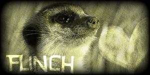 Siggy Project Flinch-2