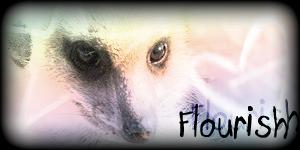 Siggy Project Flourish-1