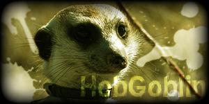 Siggy Project HobGoblin-3