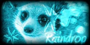Siggy Project Raindrop-2