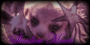 Siggy Project Shadow-Moon