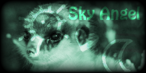 Siggy Project Sky-Angel