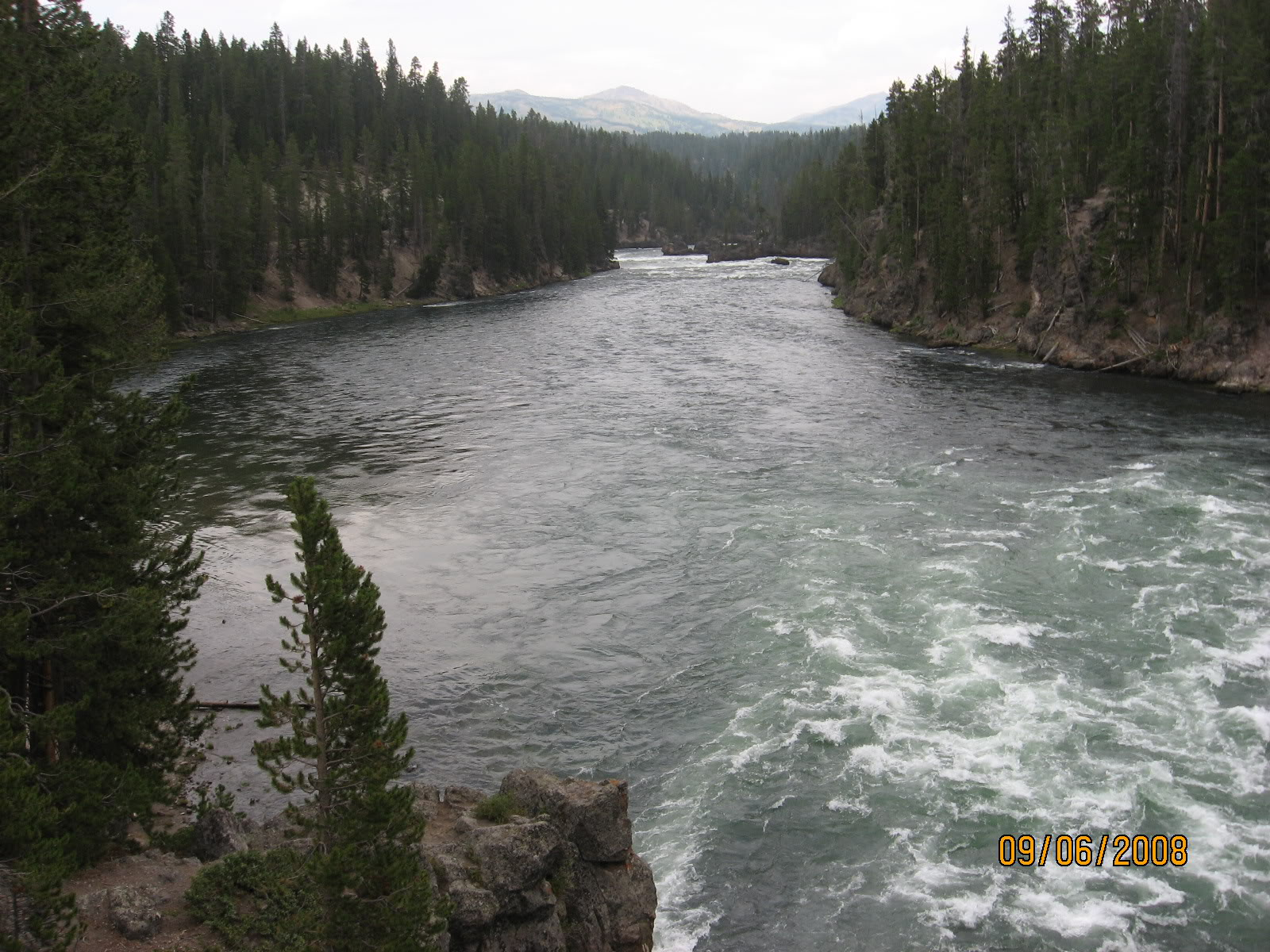 yellow stone river Pictures, Images and Photos