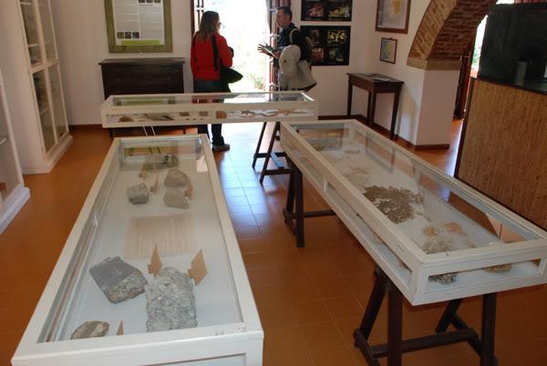 1 marzo 2012: la gita a Montecristo Museo2