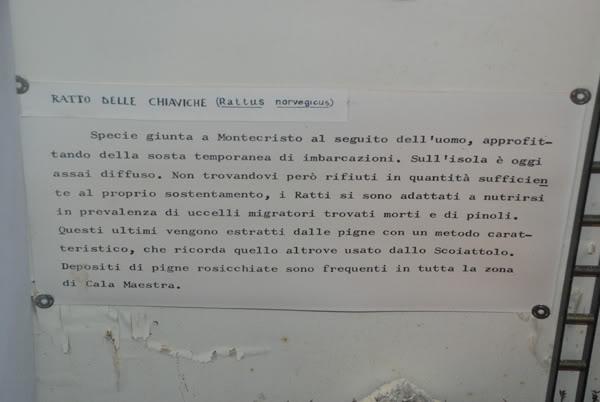 1 marzo 2012: la gita a Montecristo Rattomuseo
