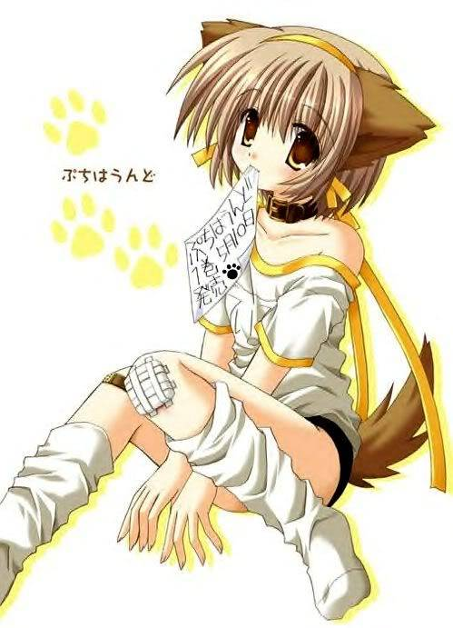 Case Closed Rp(Base on the anime, manga, and Movies.) Dog_girl